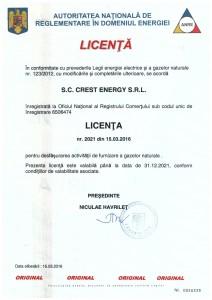 licenta-gaze